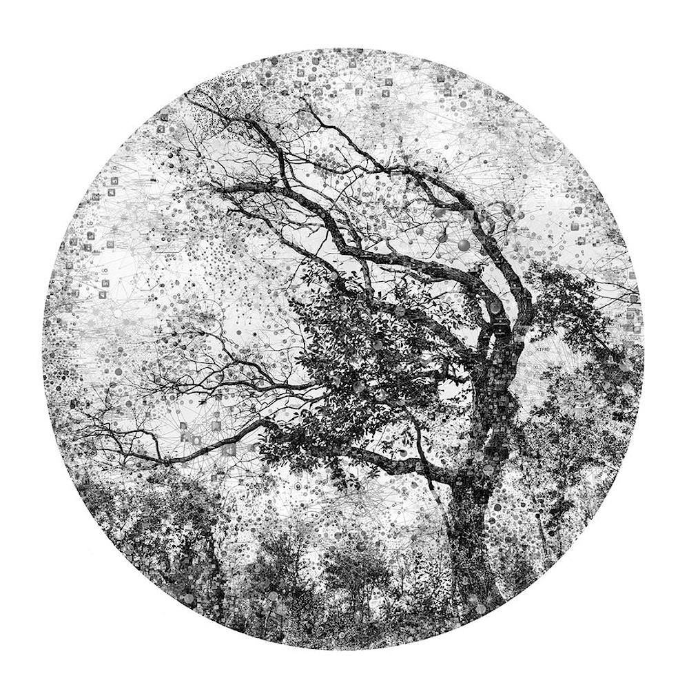 Virtual Landscapes - Ali Alışır