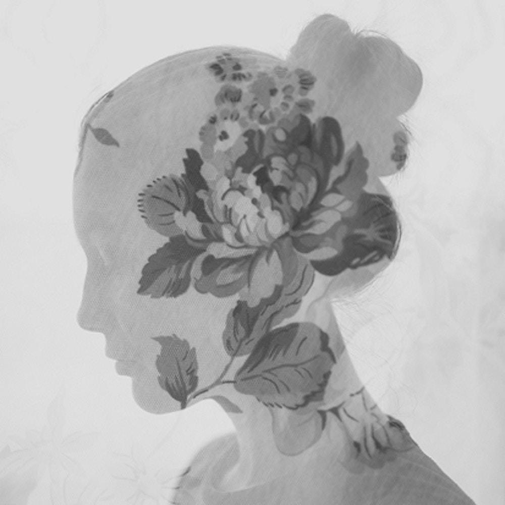 Contact - Nicole Mehl
