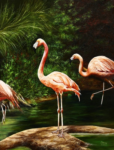 Flamingos - Aaron Grabiak Photography & Fine Art.