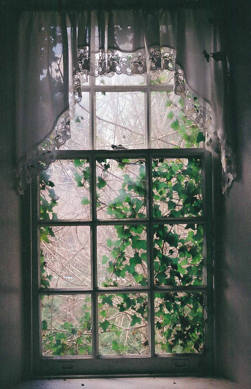 Window 2 - Andrew Hutchins