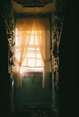 Golden Window - Andrew Hutchins