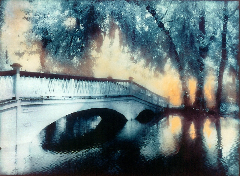 Magnolia Bridge - Alexis Dillon | PHOTOGRAPHER