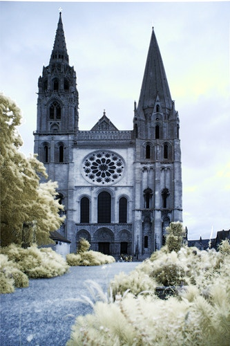 Chartres Cathedral - Alexis Dillon | PHOTOGRAPHER