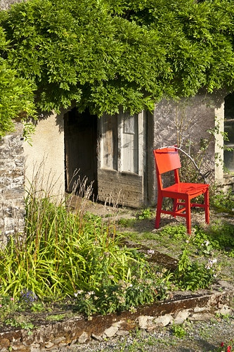 Garden Chair - Alexis Dillon | PHOTOGRAPHER