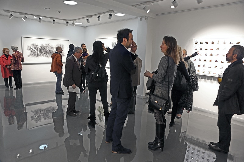 Virtual Landscapes Solo Exhibition 2015 - Ali Alışır