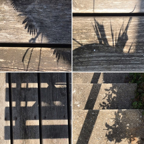 Mosaic of garden shadows - Alison Jackson-Bass