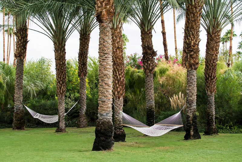 The Parker Palm Springs - AMP Imagery