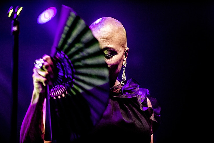 Dee Dee Bridgewater (North Sea Jazz Festival) - Andreas Terlaak Photography
