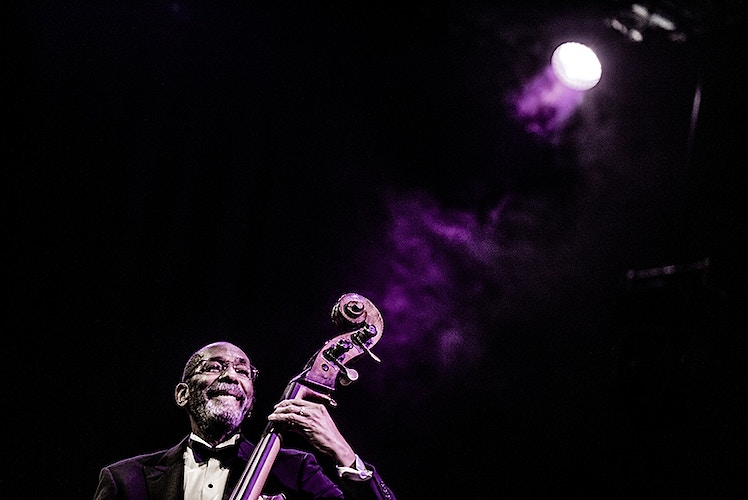 Ron Carter (North Sea Jazz Festival) - Andreas Terlaak Photography