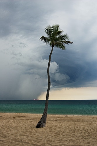 Thunderstorm Beach, Fort Lauderale - ANDREW LITSCH, photographer