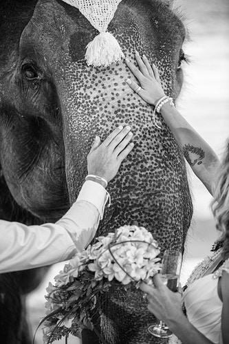 Dominique And Andrew - Koh Samui Photographer - Award Winning - Wedding - Couple - Honeymoon - Family