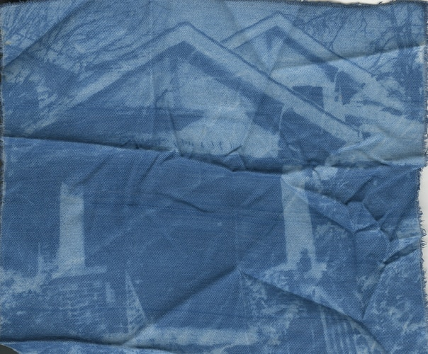 Cyanotypes 2 - Lisa Crowe