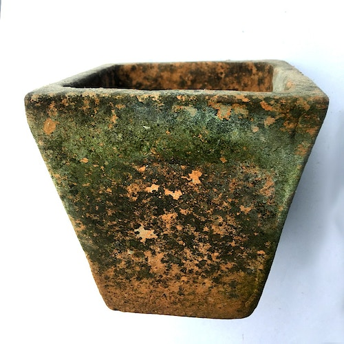 SQUARE TAPERED POT SEEDPAN - Ascott Gardens