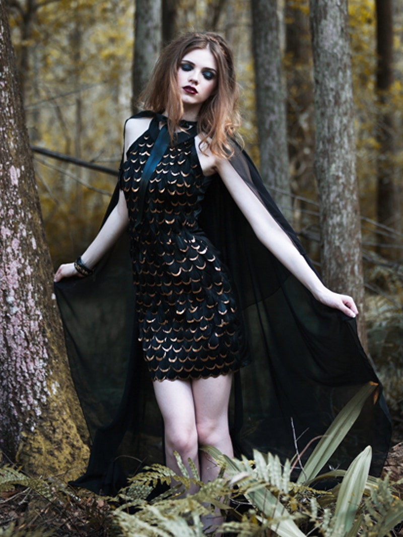 The Raven Queen - Ashley Holloway