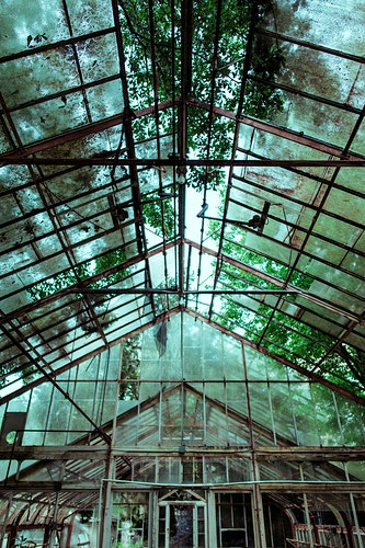 Abandoned Greenhouse - Ashton Garner