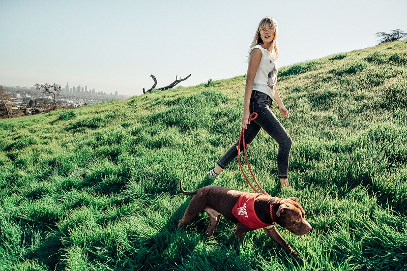 Denim and Dogs - Aaron Smith | asmith photography | Los Angeles, CA