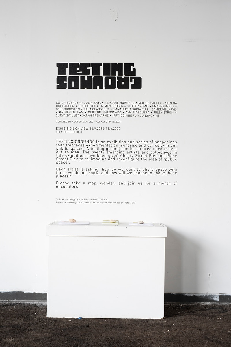 Testing Grounds A Curatorial Project - austen camille