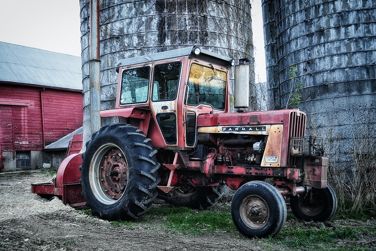 Scenery - Farm Animal Photography & Greeting Cards for Sale in NJ | Barnyard Moments