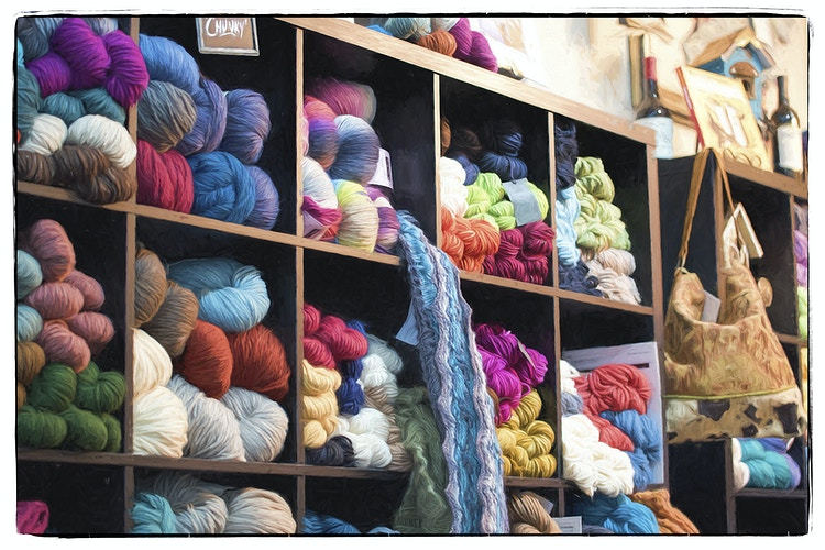 so much yarn, so little time - Farm Animal Photography & Greeting Cards for Sale in NJ | Barnyard Moments
