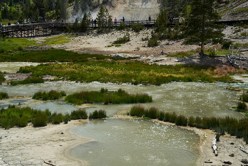 Yellowstone - Becca Magrino I Photographer