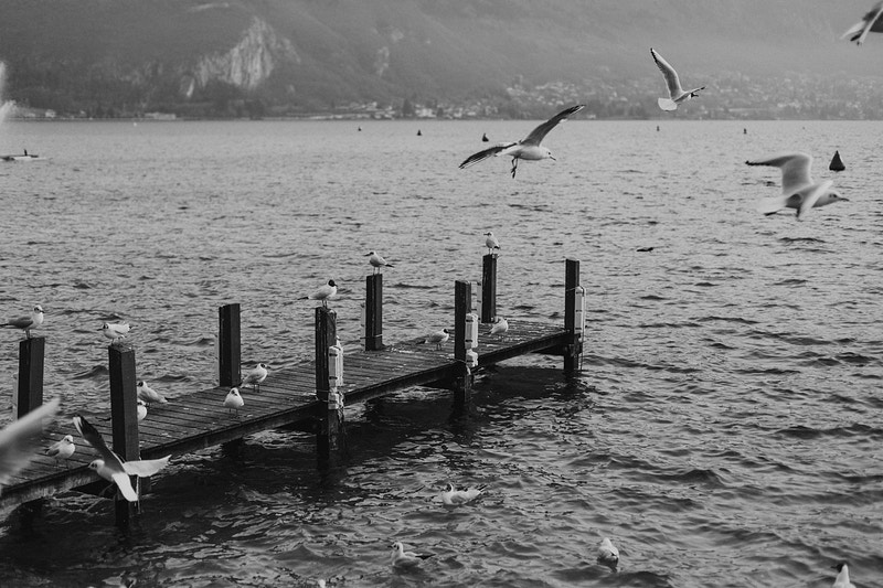 Annecy Franca - Triad Photo