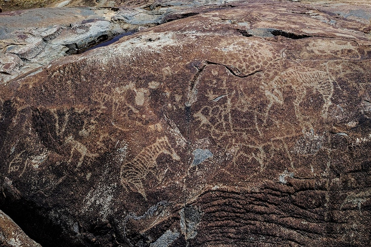 Rock Art In Namibia - Franck Bordas