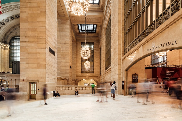 Grand Central Terminal Reed And Stem - Brendan Burden