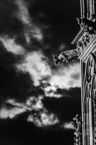 Gargoyle - Black and White - Bryan McCarvey