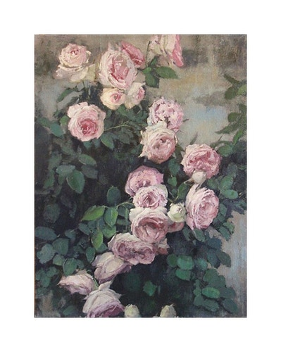 Roses - Christopher Groves