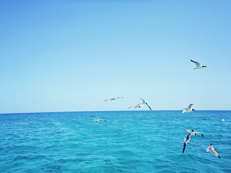 Turks And Caicos - Nancy Love Photography