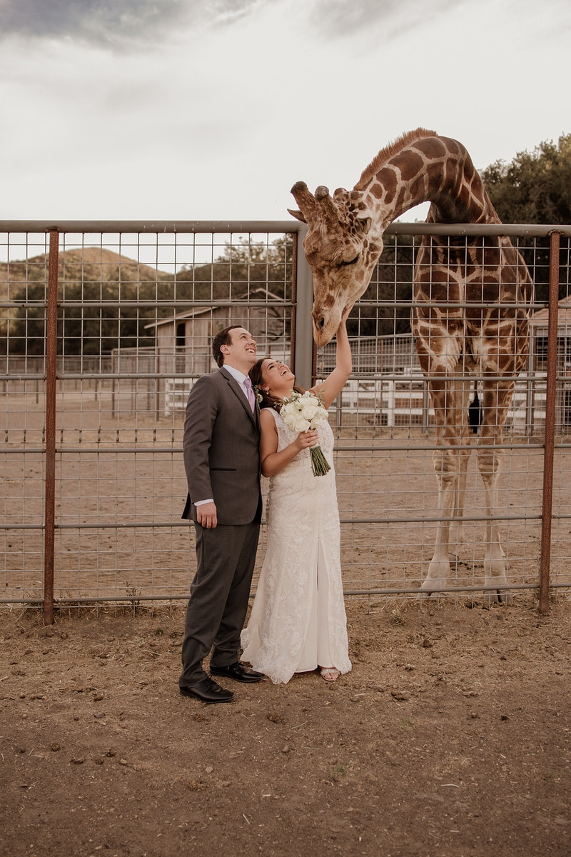 Mom I Saw A Giraffe At Work - Christy Kendall Photography