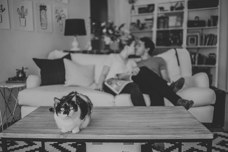 Lifestyle Couples Sessions - Christy Kendall Photography
