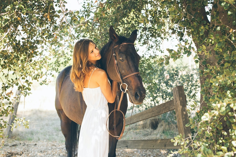 Equine Portraiture - Christy Kendall Photography