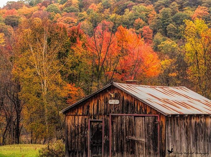 Autumn Shed_4268 - Cindy Mulvihill Photography