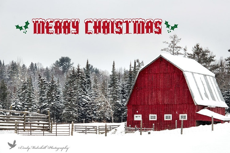 5964_Christmas Barn - Cindy Mulvihill Photography
