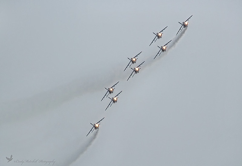 Flying High Airshow - Cindy Mulvihill Photography