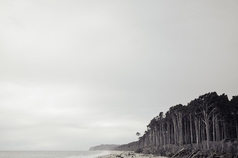 Landscapes - Cody Howell
