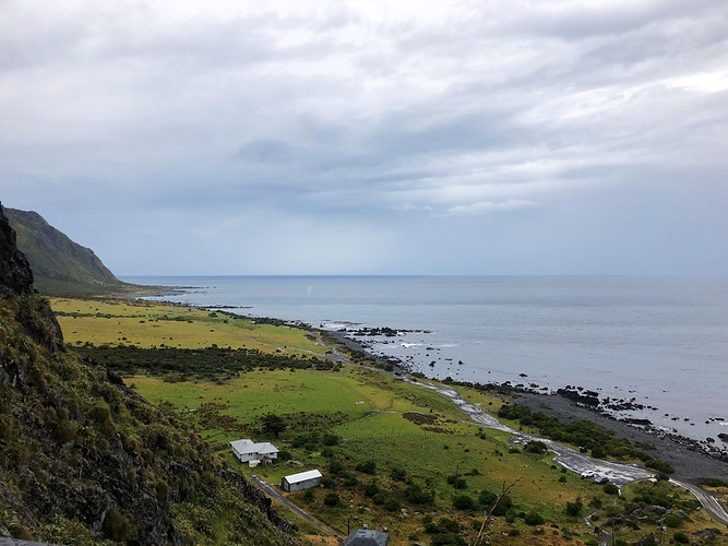 Cape Palliser - Cole McDaniel Photography