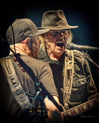NEIL YOUNG - Corey McCormick