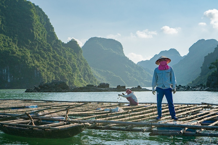 A pearl farmer in Halong Bay, Vietnam - Daniel John Photography