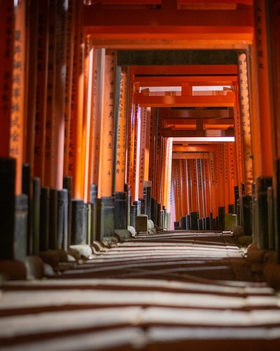 Fushimi Inari Shrine in Kyoto, Japan - the popular shrine with hundreds of Torii gates - Daniel John Photography