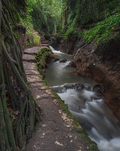 A waterfall and empty path at the Sacred Monkey Forest in Ubud Bali Indonesia - Daniel John Photography