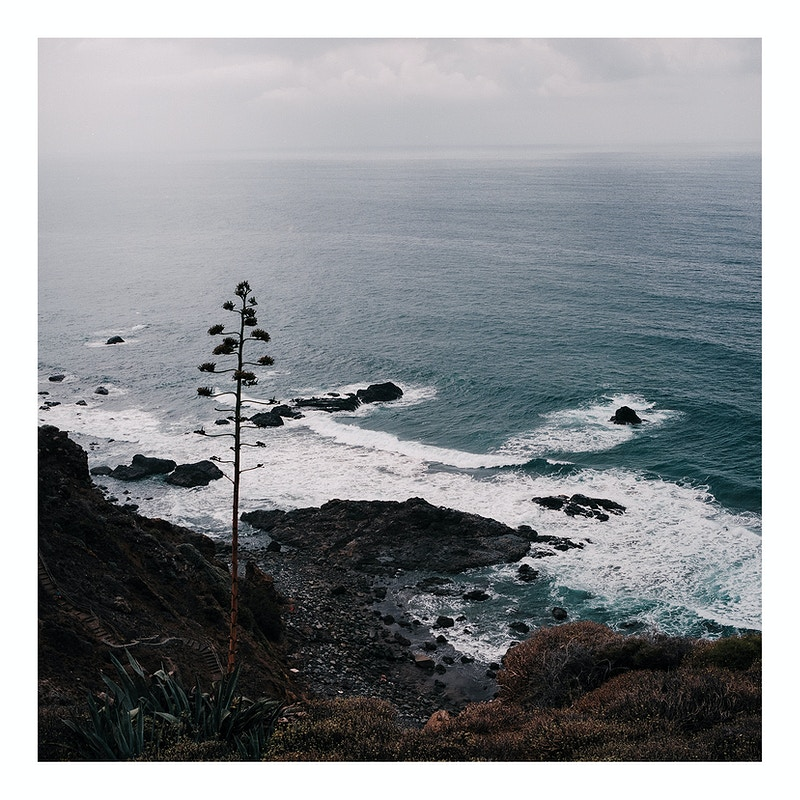 One Roll Of Tenerife - David Schermann Photography