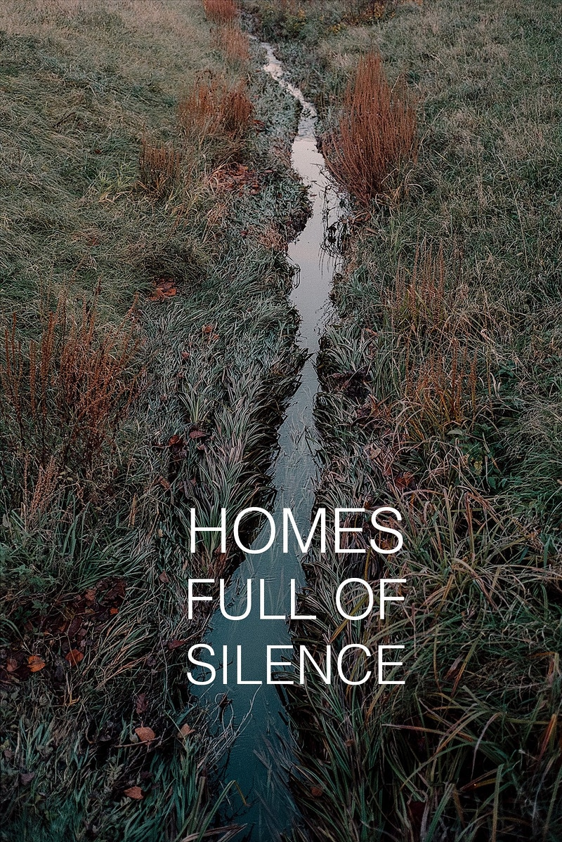 Homes Full Of Silence - David Schermann Photography