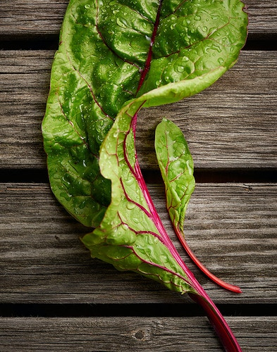 Big and Little Leaves - Deborah Fletcher | Chicago Food • Product • Still-Life Photographer