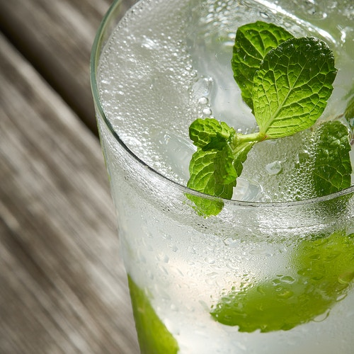 Mojito Fizz - Deborah Fletcher | Chicago Food • Product • Still-Life Photographer
