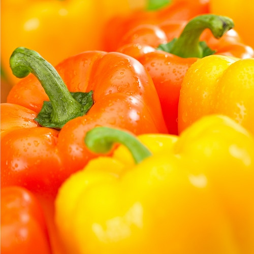 Yellow and Orange Peppers - Chicago Food, Beverage and Product Photography | Deborah Fletcher