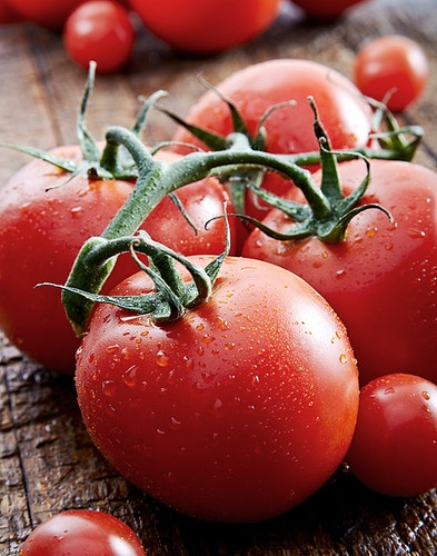 TOMATOES ON THE VINE - Chicago Food, Beverage and Product Photography | Deborah Fletcher
