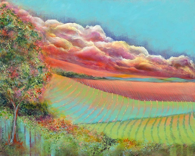 Nature's Stage: Backlit - Fine Art Reproductions Available - Di Cox Gallery