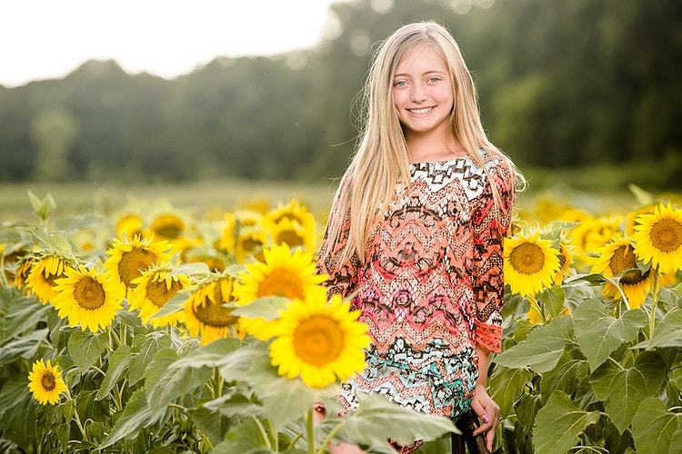 Sunflowers - Duncan Photography